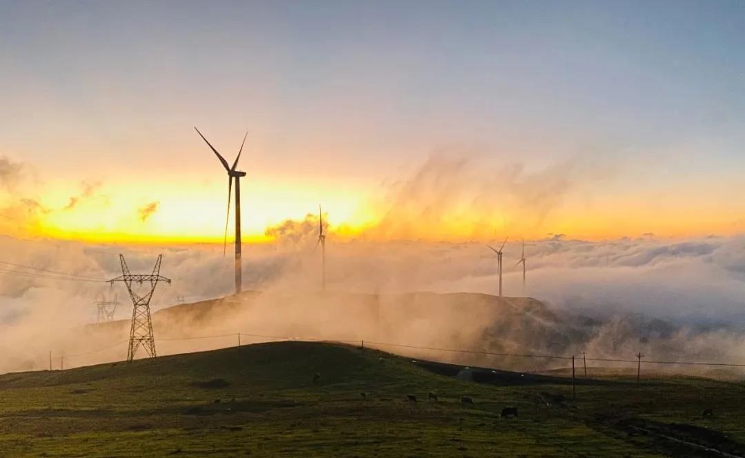 """金风科技:助推风电产业链保增长的金融之""""手"""""""