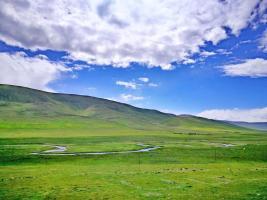 草场再现新绿 牧民展露笑颜 国家能源集团黄河源生态保护治理工程成效显著