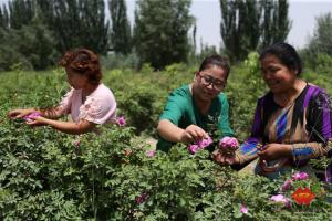 国家能源集团新疆能源公司对口帮扶20个贫困村全部脱贫摘帽