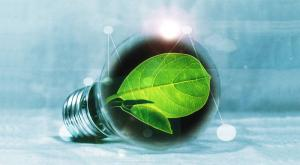 什么才是正确的碳中和?